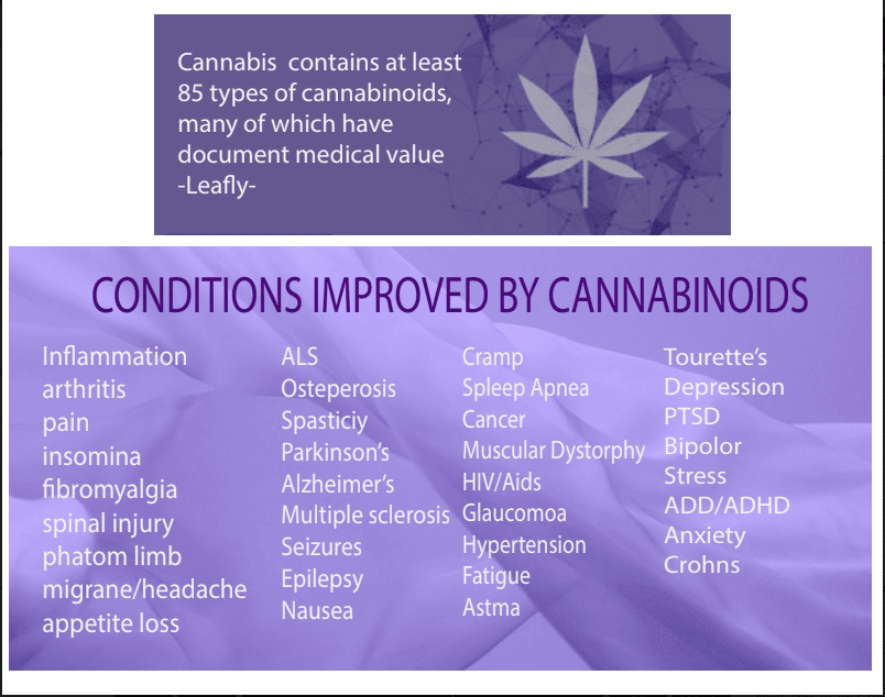 image file of Cannabinoids benefits